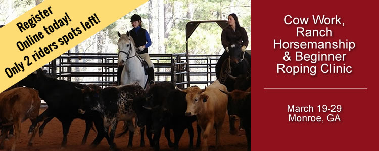 Beginner Cow Work, Ranch Horsemanship and Roping Clinic