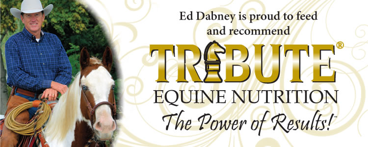 Ed Dabney endorses Tribute Equine Nutrition