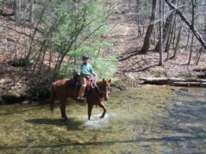 Big Fork Trail Ride