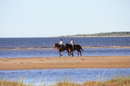 Scandinavian Horseback Riding Vacation