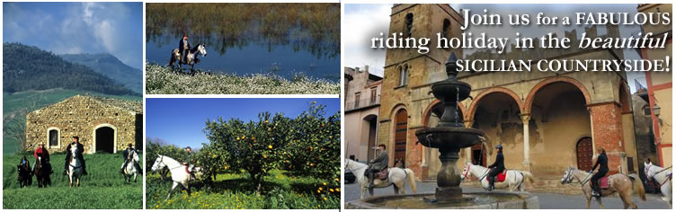 Join us for a Fabulous riding holiday in the beautiful sicilian countryside!